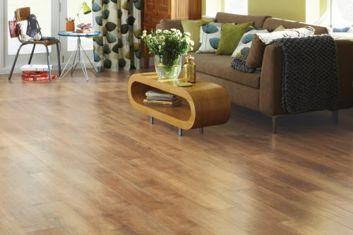 rl01_spring-oak_rs_res_family-room_image.ashx_-500x333